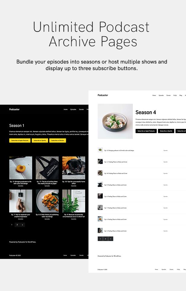Podcaster - Multimedia WordPress Theme - 17